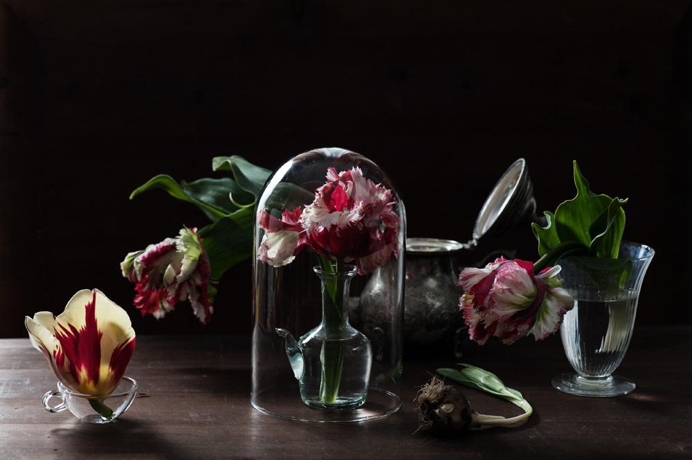 decomposed-spring-006.jpg