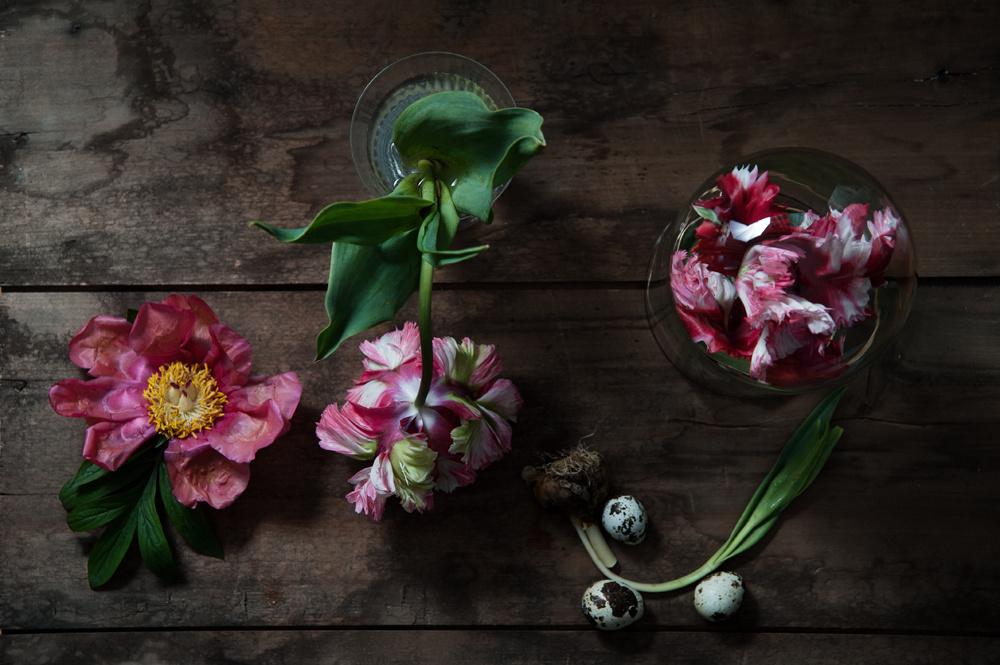 decomposed-spring-016.jpg
