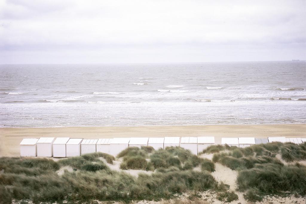 la-mer-du-nord-en-couleurs-011.jpg