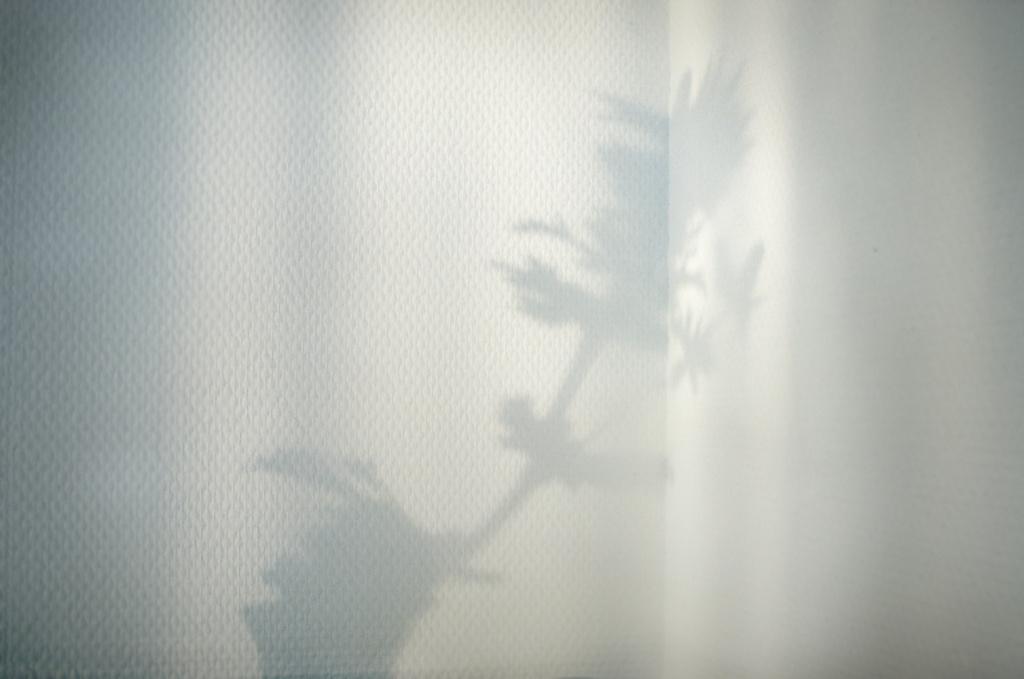 shades-of-white-006.jpg