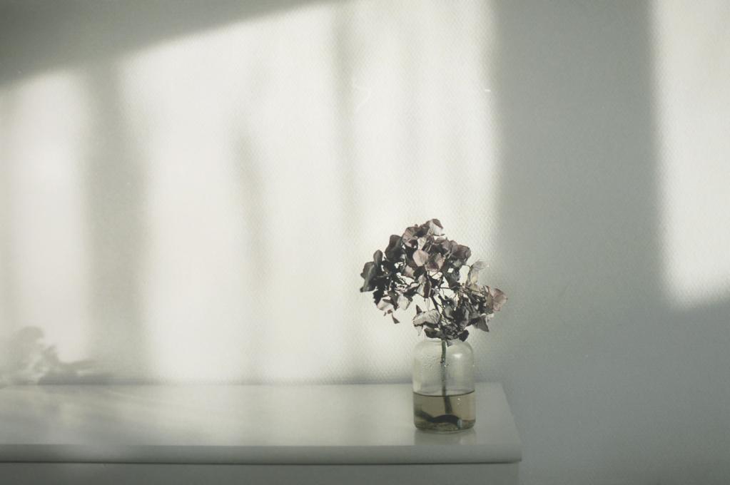 shades-of-white-007.jpg
